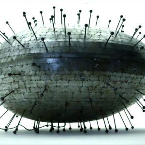 Radiolaire T-153